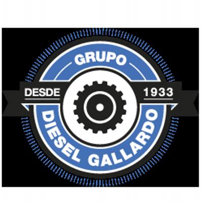 diesel gallardo